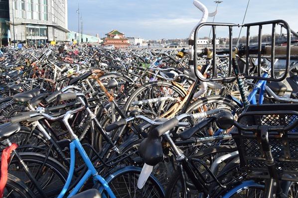 31_a-rosa-Flusskreuzfahrt-Rhein-Sightseeing-Ceentral-Bahnhof-Fahrrad-Parkplatz-Amsterdam-Holland-Niederlande