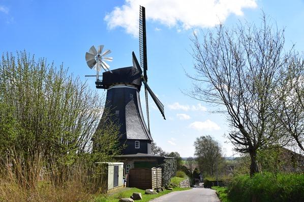 31_Windmuehle-Storchendorf-Bergenhusen-Nordfriesland-Schleswig-Holstein-Deutschland