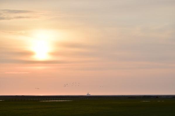 35_Sonnenuntergang-Wattenmeer-Friedrichskoog-Nordsee-Nordfriesland-Schleswig-Holstein-Deutschland