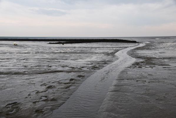 10_Wattwanderung-Nationalpark-Wattenmeer-Priel-Dithmarschen-Nordsee