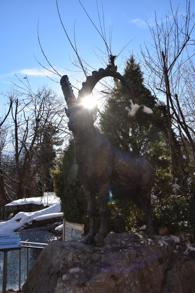 Alpenzoo Innsbruck Steinbock Statue Tirol Österreich