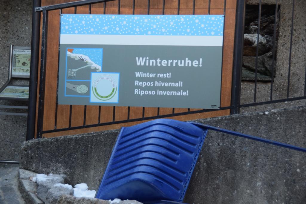 Alpenzoo Innsbruck Winter Winterruhe Winterschlaf Tirol Österreich