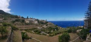 14 panorama westkueste mallorca banyalbufar terrassen spanien