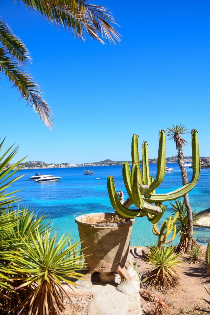 Kreuzfahrt Spanien Strand Peguera Mallorca