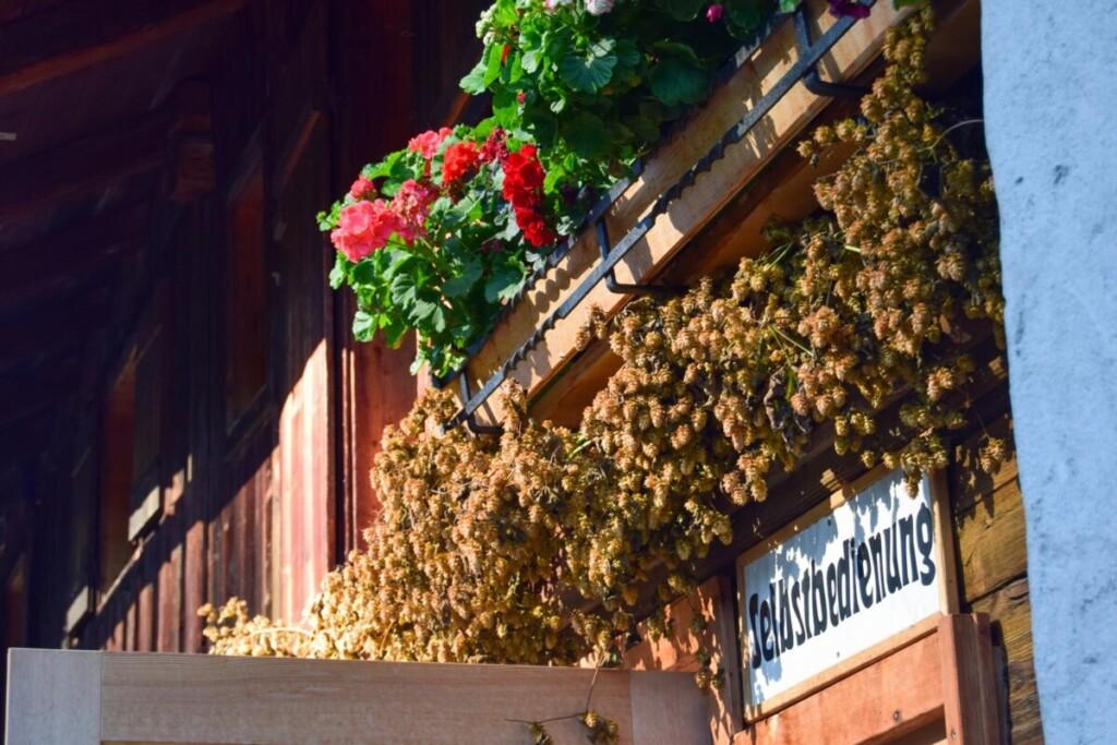 Selbstbedienung Bärenbadalm Zillergrund Karwendel Achensee Pertisau Tirol Österreich