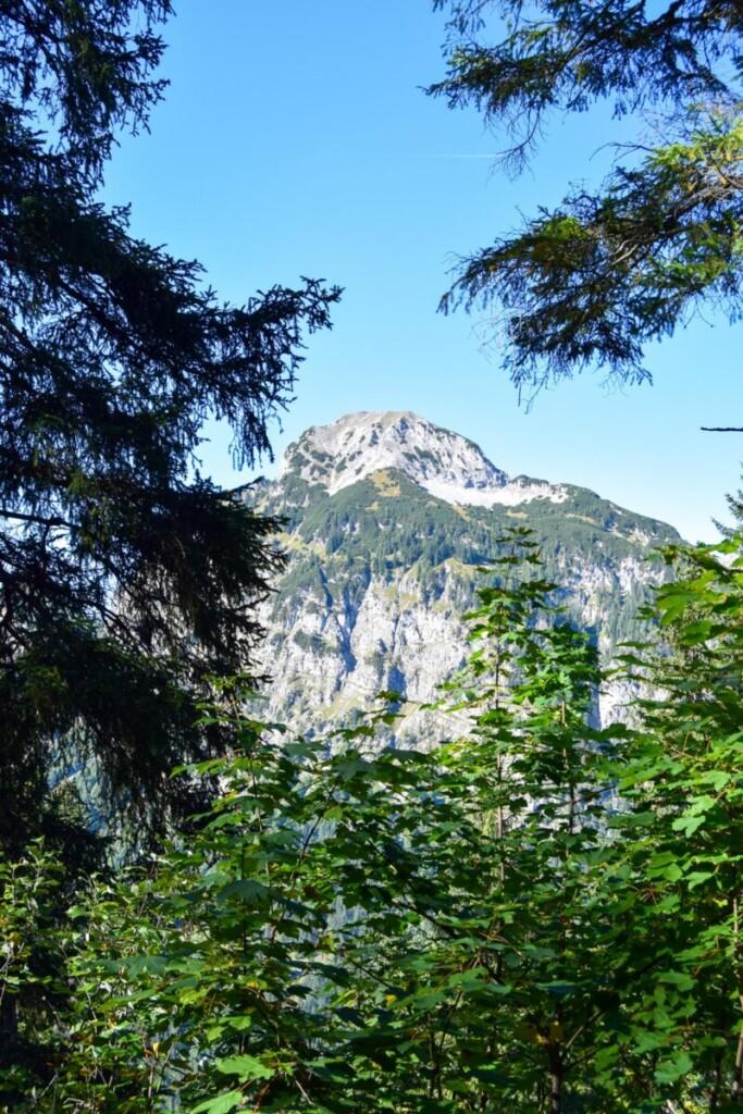 Aussicht Rundwanderweg Zwölferkopf Familienwanderung Karwendel Achensee Pertisau Tirol Österreich