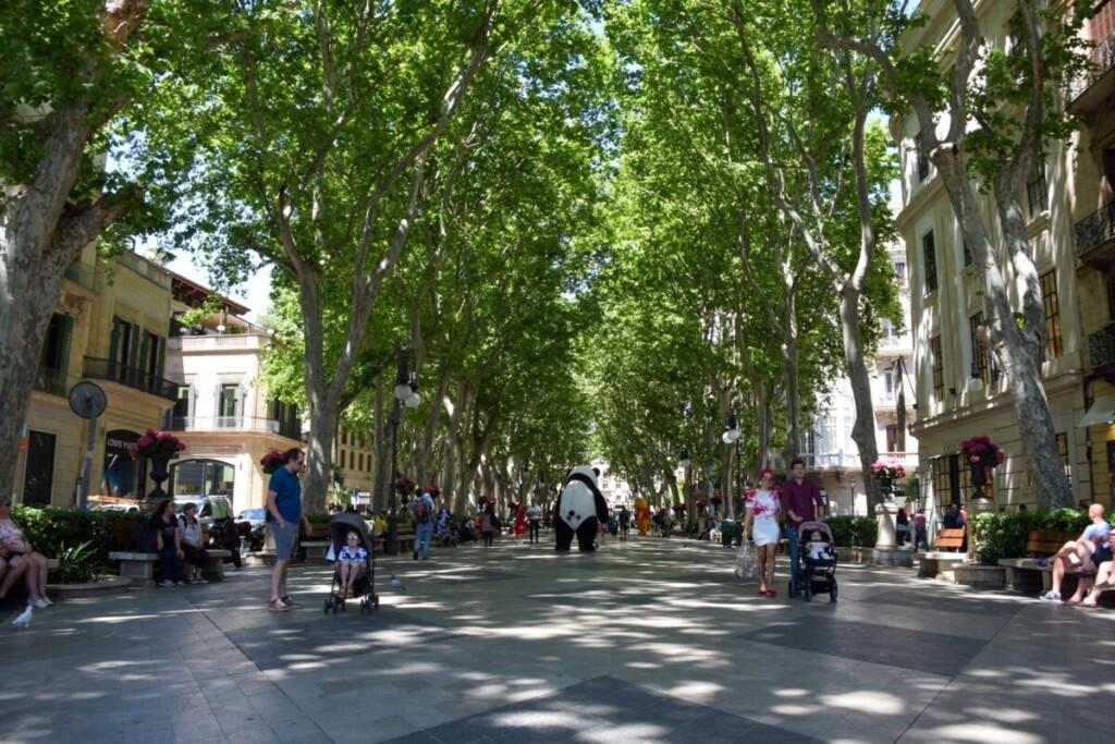 28 Einkaufsmeile Passeig des Born Palma de Mallorca Balearen Spanien